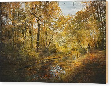 Wood Print featuring the photograph Old Stream by John Rivera