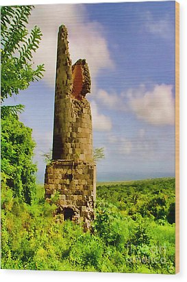 Old Sugar Mill Wood Print by Louise Fahy
