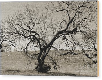 Old Texas Frontier  Wood Print