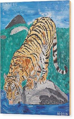 Old Tiger Drinking Wood Print by Valerie Ornstein