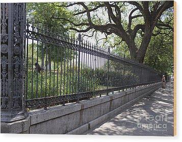 Old Tree And Ornate Fence Wood Print