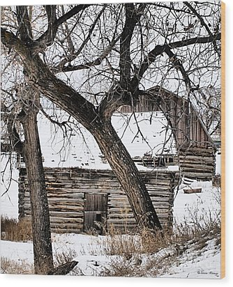 Old Ulm Barn Wood Print