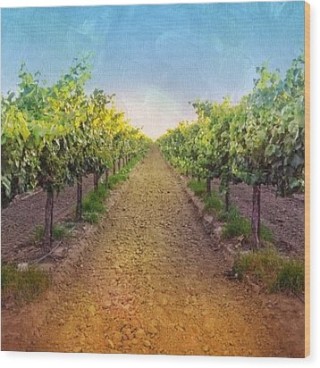 Old #vineyard Photo I Rescued From My Wood Print by Shari Warren