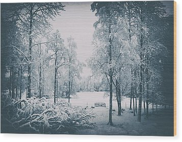 Wood Print featuring the photograph Old Vintage Winter Landscape by Christian Lagereek