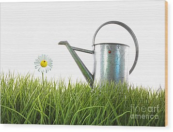 Old Watering Can In Grass With White Wood Print by Sandra Cunningham