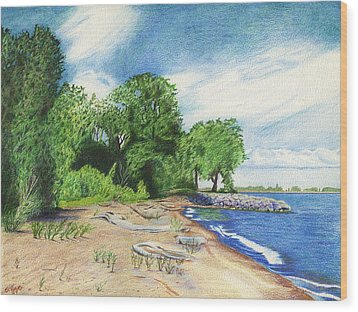 Wood Print featuring the drawing Old Woman Creek - Huron Ohio by Shawna Rowe