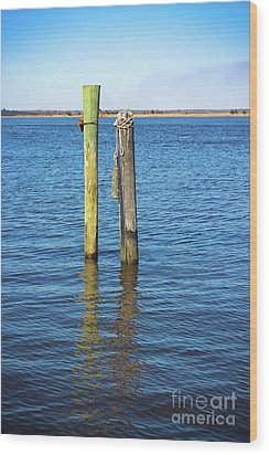 Wood Print featuring the photograph Old Wood Pilings In Blue Water by Colleen Kammerer