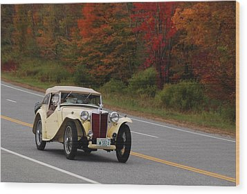Wood Print featuring the photograph Old Yeller 8168 by Guy Whiteley