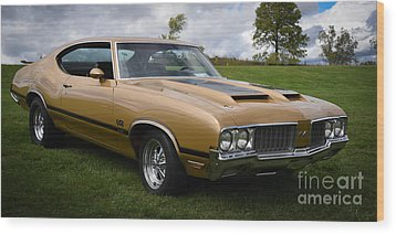 Oldsmobile 442 Wood Print