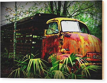 Ole Cow Truck Wood Print by Dana  Oliver