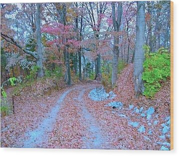Ole Kentucky Rural Road To Nowhere Wood Print