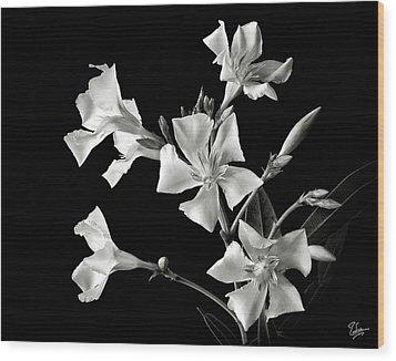 Oleander In Black And White Wood Print