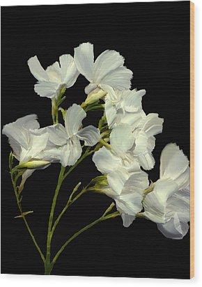 Oleander Wood Print by Kurt Van Wagner