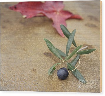 Wood Print featuring the photograph Olive by Cindy Garber Iverson