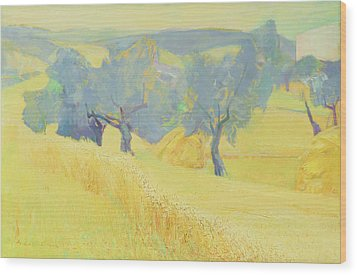 Olive Trees In Tuscany Wood Print by Antonio Ciccone