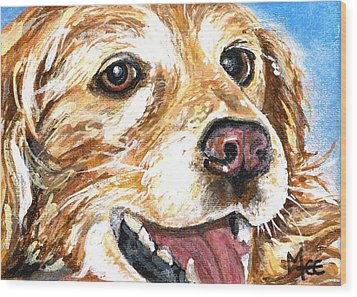 Oliver From Muttville Wood Print by Mary-Lee Sanders