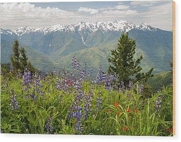 Olympic Mountain Wildflowers Wood Print