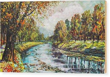 Olza River Wood Print