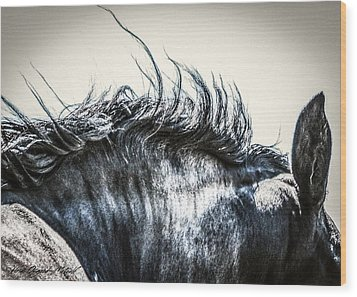 #1240 - Mortana Morgan Mare Wood Print