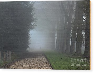 On An Autumn Day In The Mist Wood Print