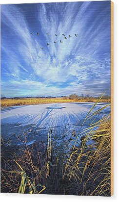 Wood Print featuring the photograph On Frozen Pond by Phil Koch
