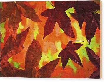 On Golden Pond Wood Print by Bobby Villapando