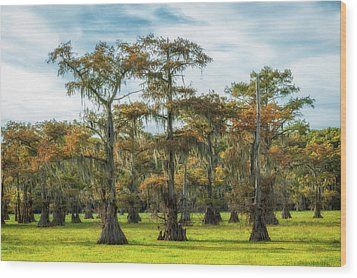 On Green Bayou Wood Print