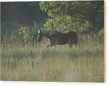 Wood Print featuring the photograph On My Own by Heidi Poulin