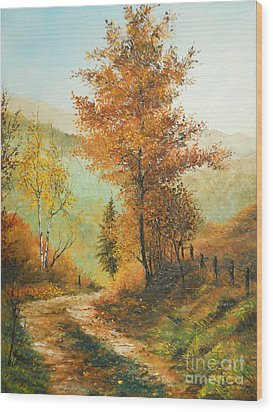 On My Way Home Wood Print by Sorin Apostolescu