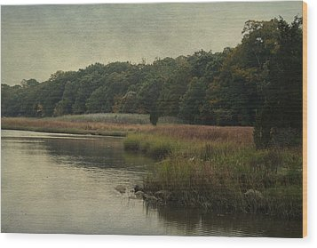Wood Print featuring the photograph On The Brink Of Winter by Rosemary Aubut