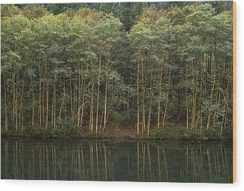 On The Clackamas Wood Print by Larry Darnell