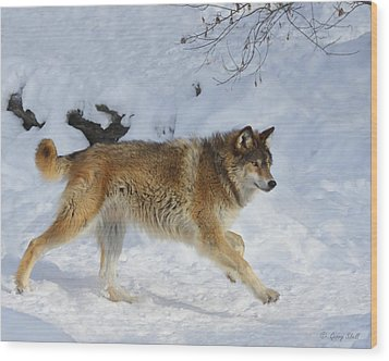 On The Hunt Wood Print by Gerry Sibell