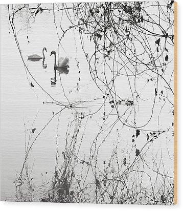 On The Lake  Wood Print by Floriana Barbu