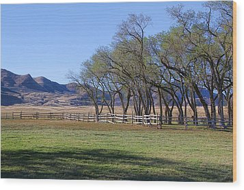 Wood Print featuring the photograph On The Ranch by Ely Arsha