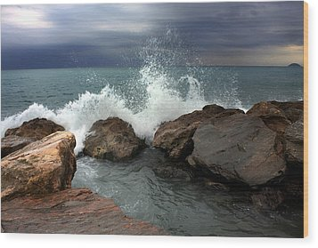 Wood Print featuring the photograph On The Rocks by Martina  Rathgens