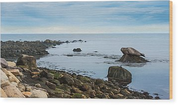 Wood Print featuring the photograph On The Rocks by Robin-Lee Vieira