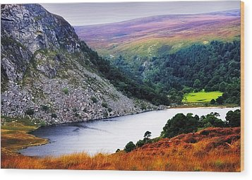 On The Shore Of Lough Tay. Wicklow. Ireland Wood Print by Jenny Rainbow