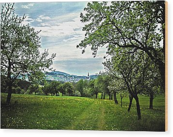 On The Way To Gramastetten ... Wood Print by Juergen Weiss