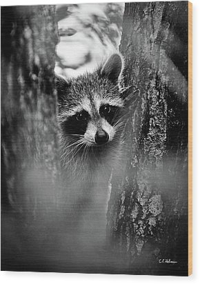 On Watch - Bw Wood Print by Christopher Holmes