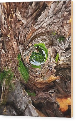 Wood Print featuring the photograph Once A Tree by Pennie  McCracken