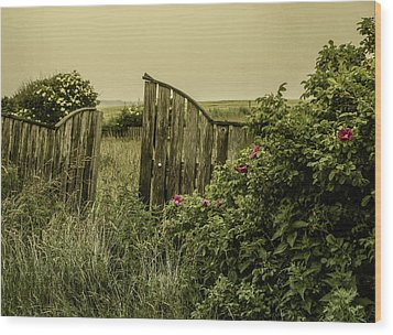 Wood Print featuring the photograph Once Was A Garden by Odd Jeppesen