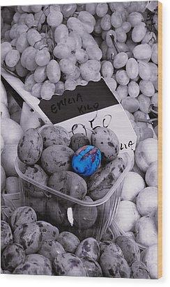 One Blue Plum Wood Print by Michael Henderson