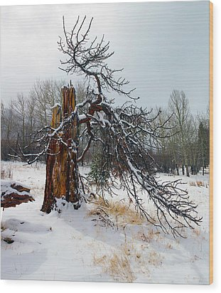 Wood Print featuring the photograph One Branch Left by Shane Bechler
