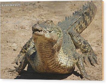One Crazy Saltwater Crocodile Wood Print by Gary Crockett