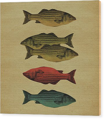 One Fish, Two Fish . . . Wood Print
