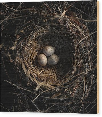 One Of The Most Private Things In The World Is An Egg Until It Is Broken Mfk Fisher Wood Print by Mark Fuller
