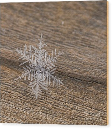 Wood Print featuring the photograph One Snowflake by Ana V Ramirez