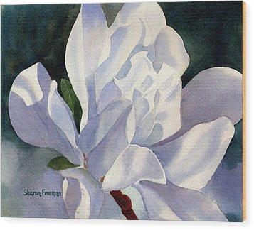 One Star Magnolia Blossom Wood Print by Sharon Freeman
