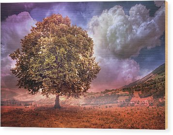 Wood Print featuring the photograph One Tree In The Meadow by Debra and Dave Vanderlaan