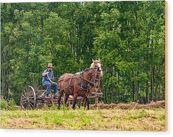One With The Land Wood Print by Steve Harrington